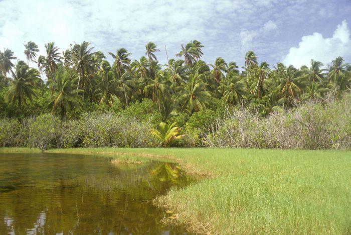 1280px-flint_island_akk_lake