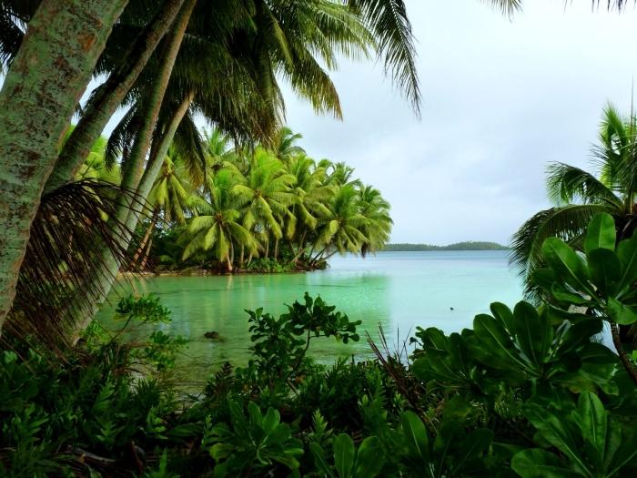 strawn_island_at_palmyra_atoll_nwr_5123999194